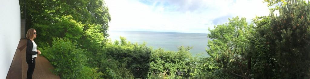 Louisiana Panorama