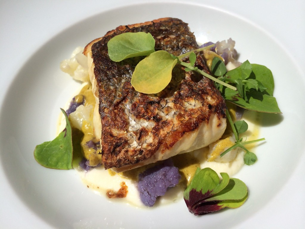 Hake, mussels with curry cream, and cauliflower