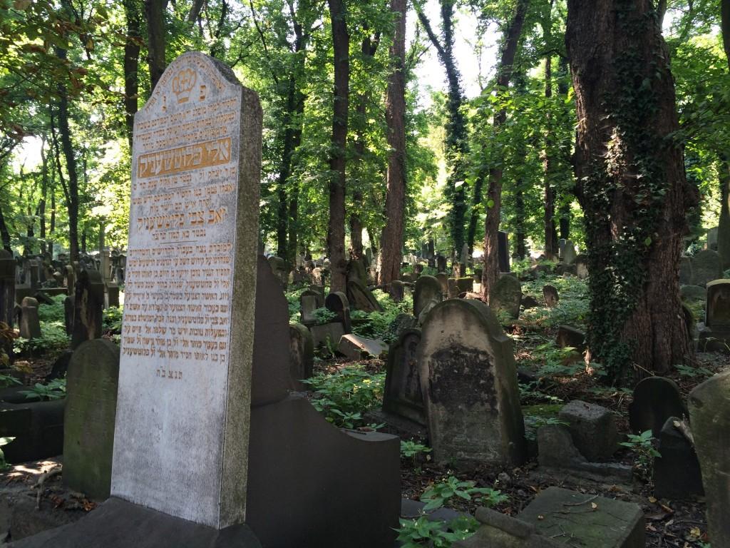 jewish cemetery krakow