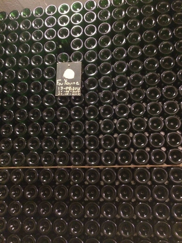 Wall of bottles of Fou Foune and Cantillon brewery